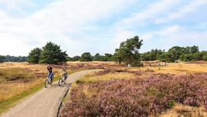 Cycling on the Veluwe.